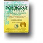 dr._chen_pollengrape_szolomag_kivonat_kapszula_30_db