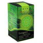 mandala_bio_filteres_tea_evergreen_20_filter