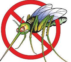 Kullancsok és szúnyogok ellen – úticsomag